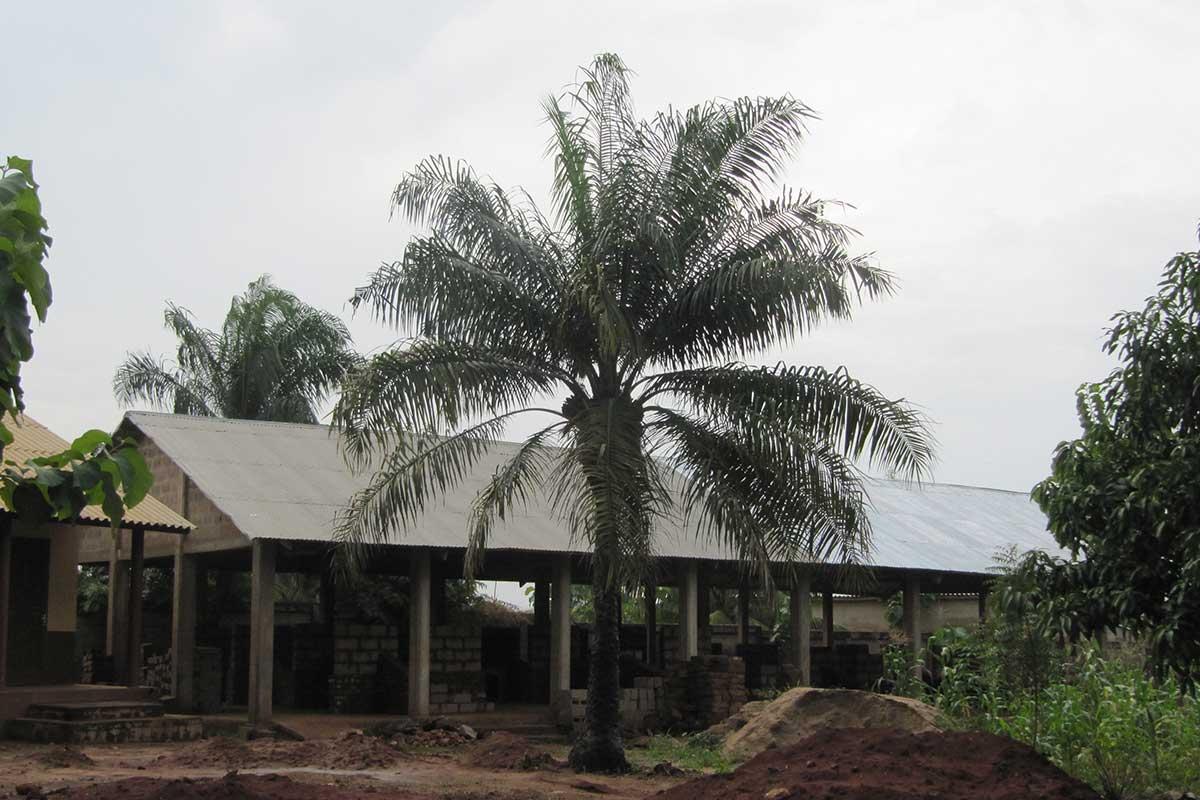 Das neue Dach der Maurerei